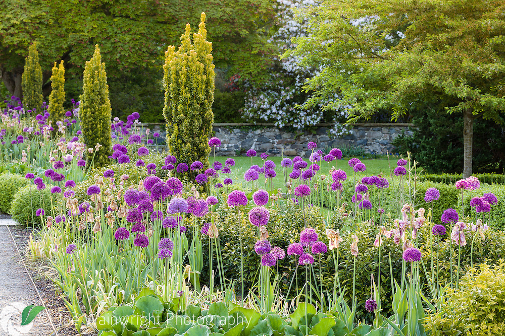 The Range at Bodnant Garden, photographed early on a June morning