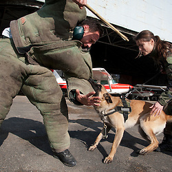 Entrainement des &eacute;quipes cynophiles de la Gendarmerie Nationale en Ile de France.<br /> mars 2012 / Domont / Val d'Oise (95) / FRANCE<br /> Cliquez ci-dessous pour voir le reportage complet (80 photos) en acc&egrave;s r&eacute;serv&eacute;<br /> http://sandrachenugodefroy.photoshelter.com/gallery/2012-03-Entrainement-des-equipes-cynophiles-gendarmerie-Complet/G0000vuDan46sRx4/C0000yuz5WpdBLSQ