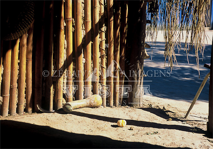Bambus utilizados na arquitetura Guarani, Santa Catarna, Brasil. foto de Ze Paiva/Vista Imagens