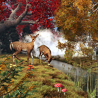 Two beautiful deer stand by a cool, gorgeous lake. One of the deer has dipped its head gently to have a drink. The other deer's attention has been taken by something. Is a hunter nearby? We don't know, but we can imagine the scene will continue to be peaceful. The other deer seems to be quite calm. This is a stunning work of fine art that depicts the beauty of nature. More to the point, it shows these things in a way that allows us to focus on dozens of details simultaneously. This piece is available as canvas or framed wall art. .<br />