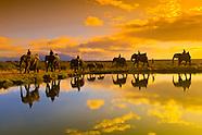 South Africa-Kruger National Park