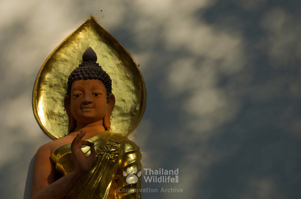 Buddha at Wat Chom Choeng Temple in Chiang Saen, Chiang Rai Northern Thailand South East Asia.