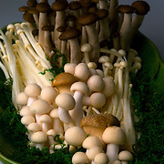 A medley of mushrooms