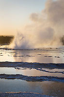 Great Fountain Geyser erupting at sunset, Yellowstone National Park