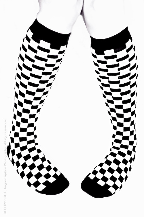 black and white checked knee-high socks on white background