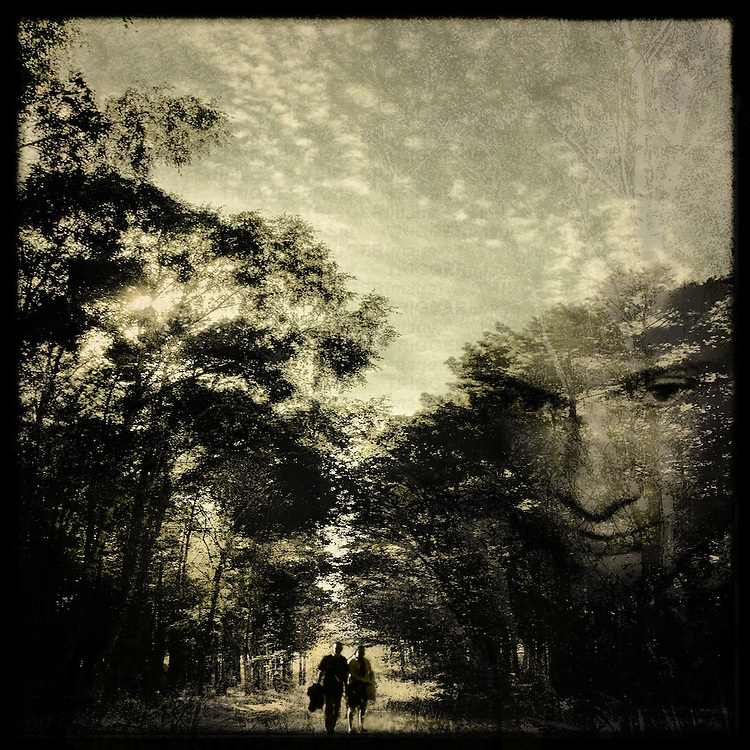 A man and a woman walking along a path through woodland