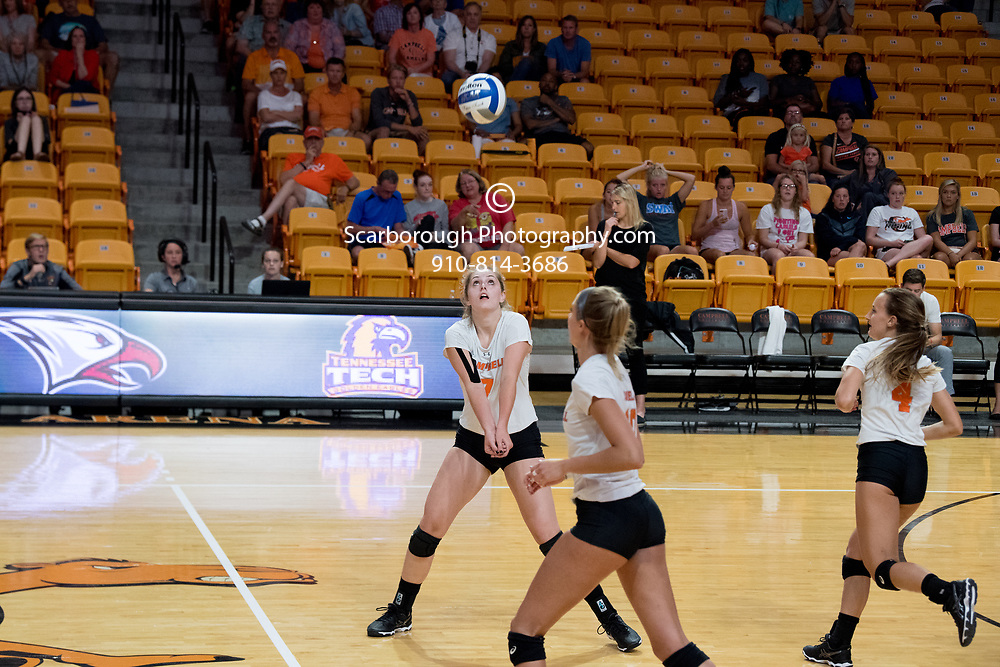 2017 Campbell University Volleyball vs Citadel