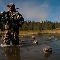 A waterfowl hunter in the field.