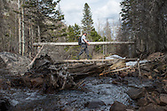 2016 APR 20: Steve Schweitzer, author, fly fishes in Rocky Mountain National Park.