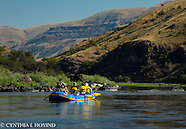 Lower Salmon River 2014