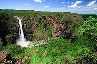 Wallaman Falls is Queensland's highest waterfall and is just outside of Ingham, south of Cairns, far north Queensland, Australia.
