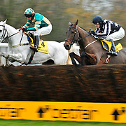 Haydock Betfair Chase Day