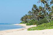 Horizontal image of a beach on the North Shore of Oahu, Hawaii.