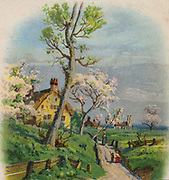 An English country track in springtime: church and thatched cottages in background, fruit trees in blossom. Chromolithograph c1890.