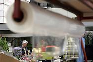 Cooperativa Ucflor (Unione Cooperativa Floricoltori della Riviera) : si trova all'interno del Mercato dei fiori di Sanremo..E' una cooperativa di produttori che riunisce 1134 soci singoli e una decina di cooperative. .Dal 1 ottobre 1999 gestisce il Mercato dei Fiori di Sanremo. .Oltre ad esercitare le funzioni legate alla direzione del Mercato, si occupa della gestione di molti servizi a favore degli operatori del settore (dalla concessione di locali all'interno del Mercato, alle statistiche, alla promozione dei fiori di Sanremo nel mondo . *** Local Caption ***<br /> <br /> UCFLOR Cooperative (Co-operative Union of florists Riviera) is located inside the flower market of Sanremo .. It 's a producers' cooperative that brings together 1,134 individual members and a around ten co-operatives. . From 1 October 1999 manages the Sanremo Flower Market. . In addition to exercising the functions related to market direction, is responsible for managing many services available to the industry (from the grant of premises in the Market, statistics, promotion of the flowers of Sanremo in the world.