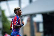 Patrick van Aanholt (3) of Crystal Palace during the Premier League match between Fulham and Crystal Palace at Craven Cottage, London, England on 11 August 2018.