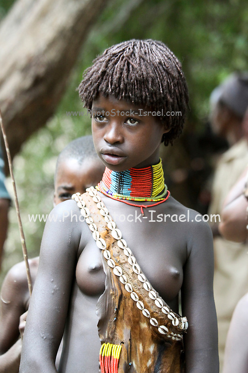Africa, Ethiopia, Omo River Valley Hamer Tribe young topless female member