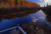 Pocono Wetlands, Pike County, PA