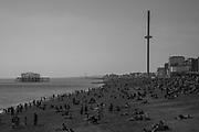 Brighton, 19 April 2019