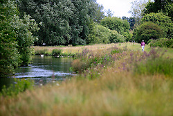 UK ENGLAND WEST BERKSHIRE LOWER DENTON 26JUN08 - The river Kennet near Lower Denton in West Berkshire, western England near a sewage treatment works...jre/Photo by Jiri Rezac / WWF UK..© Jiri Rezac 2008..Contact: +44 (0) 7050 110 417.Mobile:  +44 (0) 7801 337 683.Office:  +44 (0) 20 8968 9635..Email:   jiri@jirirezac.com.Web:     www.jirirezac.com..© All images Jiri Rezac 2008 - All rights reserved.