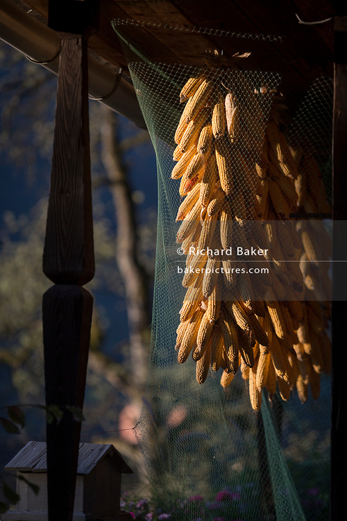 Drying maize in a rural Slovenian village, on 19th June 2018, in Bohinjska Bela, Bled, Slovenia.