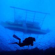 Underwater scenic