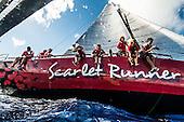 Les Voiles de Saint Barths - Scarlet Runner