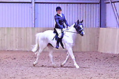 01 - 02nd Oct - Dressage