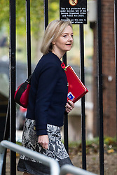 London, October 31 2017. Chief Secretary to the Treasury Liz Truss attends the UK cabinet meeting at Downing Street. © Paul Davey