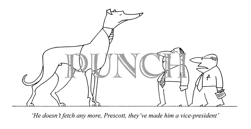 'He doesn't fetch any more, Prescott, they've made him a vice-president'