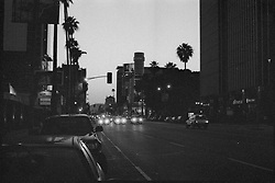 Sunset Boulevard Hollywood at Sunset.