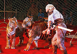 September 15, 2016 - Kiev, Ukraine - An Ukrainian National Circus artist performs with tigers during the presentation of the new show program  ''Extreme Arena'' at the Ukrainian National Circus in Kiev, Ukraine, 15 September,2016. The show will be staged from 15 September to 11 December 2016. (Credit Image: © Str/NurPhoto via ZUMA Press)