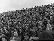 Crowd Scene at Croke Park, Dublin<br /> 01/08/1954