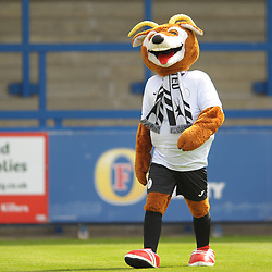 TELFORD COPYRIGHT MIKE SHERIDAN Telford mascot Bobby Buck during the National League North fixture between AFC Telford United and Gateshead FC at the New Bucks Head Stadium on Saturday, August 10, 2019<br /> <br /> Picture credit: Mike Sheridan<br /> <br /> MS201920-005