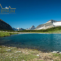 alpine meadow preston park glacier national park
