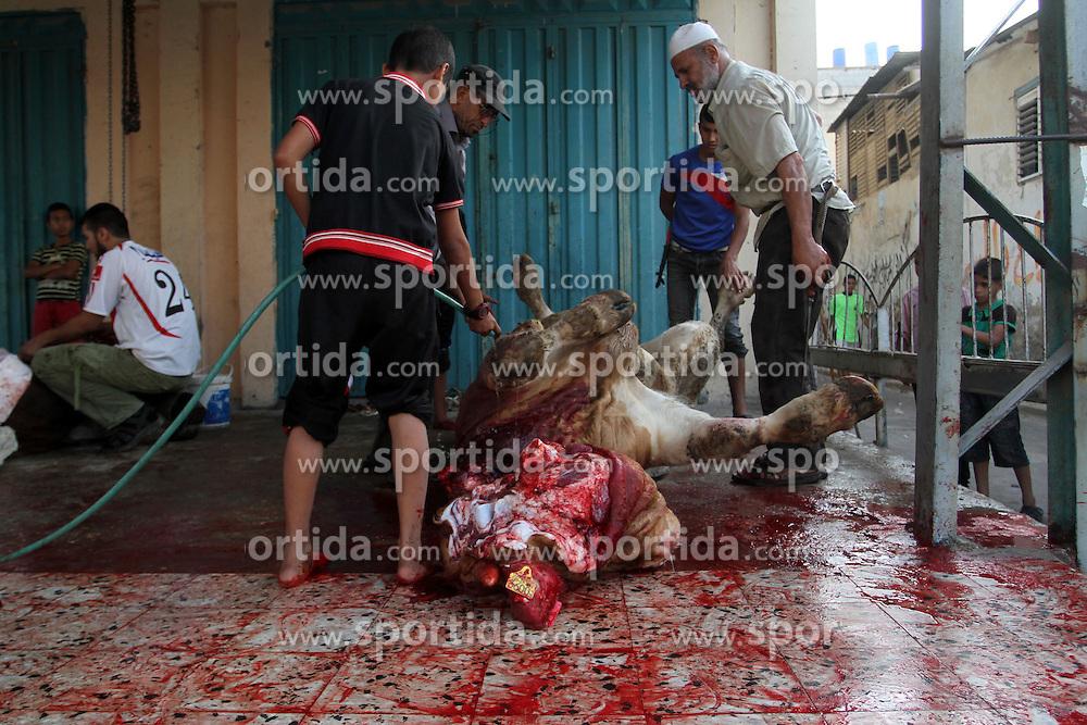 24.09.2015, Rafah, PSE, Islamisches Opferfest Eid al Adha, im Bild Es wird zum H&ouml;hepunkt des Haddsch gefeiert, der Wallfahrt nach Mekka, beginnt j&auml;hrlich am Zehnten des islamischen Monats Dhu l-Hiddscha und dauert vier Tage // Palestinian Muslims sacrifice animals on the first day of of Eid al-Adha or the feast of sacrifice. Muslims across the world are celebrating the annual festival of Eid al-Adha, or the Festival of Sacrifice, which marks the end of the Hajj pilgrimage to Mecca and in commemoration of Prophet Abraham's readiness to sacrifice his son to show obedience to God, Palestine on 2015/09/24. EXPA Pictures &copy; 2015, PhotoCredit: EXPA/ APAimages/ Abed Rahim Khatib<br /> <br /> *****ATTENTION - for AUT, GER, SUI, ITA, POL, CRO, SRB only*****
