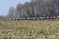 The peloton on Elsstraat during the 2019 E3 Harelbeke Binck Bank Classic 2019 running 203.9km from Harelbeke to Harelbeke, Belgium. 29th March 2019.<br /> Picture: Eoin Clarke | Cyclefile<br /> <br /> All photos usage must carry mandatory copyright credit (© Cyclefile | Eoin Clarke)