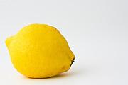 Lemon, London, England, United Kingdom