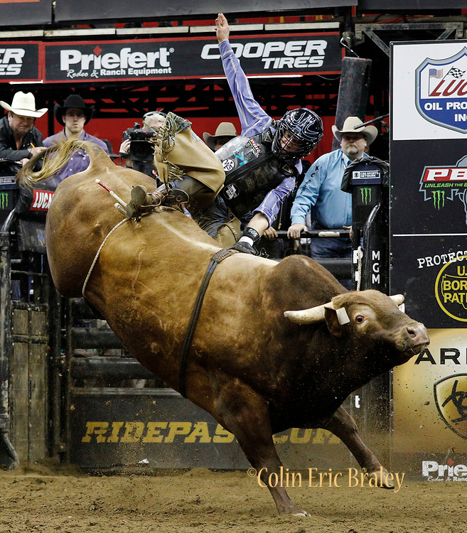 Scottie Knapp rides Mind Freak during a Professional Bull Riders competition at the Sprint Center, in Kansas City, Mo., Sunday, March 24, 2019. (AP Photo/Colin E. Braley)