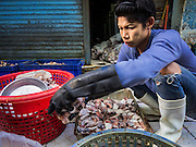 14 AUGUST 2015 - BANGKOK, THAILAND: A man separates frozen fish for sorting in Saphan Pla fish market in Bangkok. Saphan Pla fish market is the wholesale fish market that serves Bangkok. Most of the fish sold in Saphan Pla is farmed raised fresh water fish. The market is open 24 hours but it's busiest in the middle of the night and then again from about 7.30 until 11 in the morning.       PHOTO BY JACK KURTZ