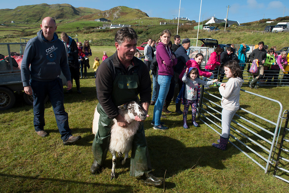 Clare Island Ram Fair &amp; Sheep Dog Trials.<br /> Michael McNamarra who won first prize with their aged Blackface Ewes. Pic: Michael Mc Laughlin