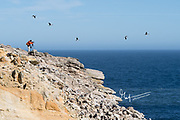 A man takes photographs of birds flying over a large seabird colony.