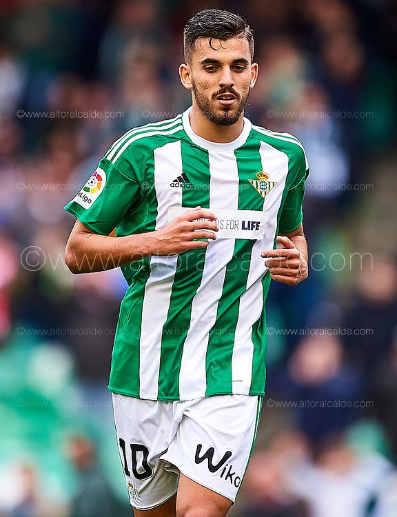 SEVILLE, SPAIN - DECEMBER 04:   Dani Ceballos of Real Betis Balompie looks on during La Liga match between Real Betis Balompie an RC Celta de Vigo at Benito Villamarin Stadium on December 4, 2016 in Seville, Spain.  (Photo by Aitor Alcalde Colomer/Getty Images)