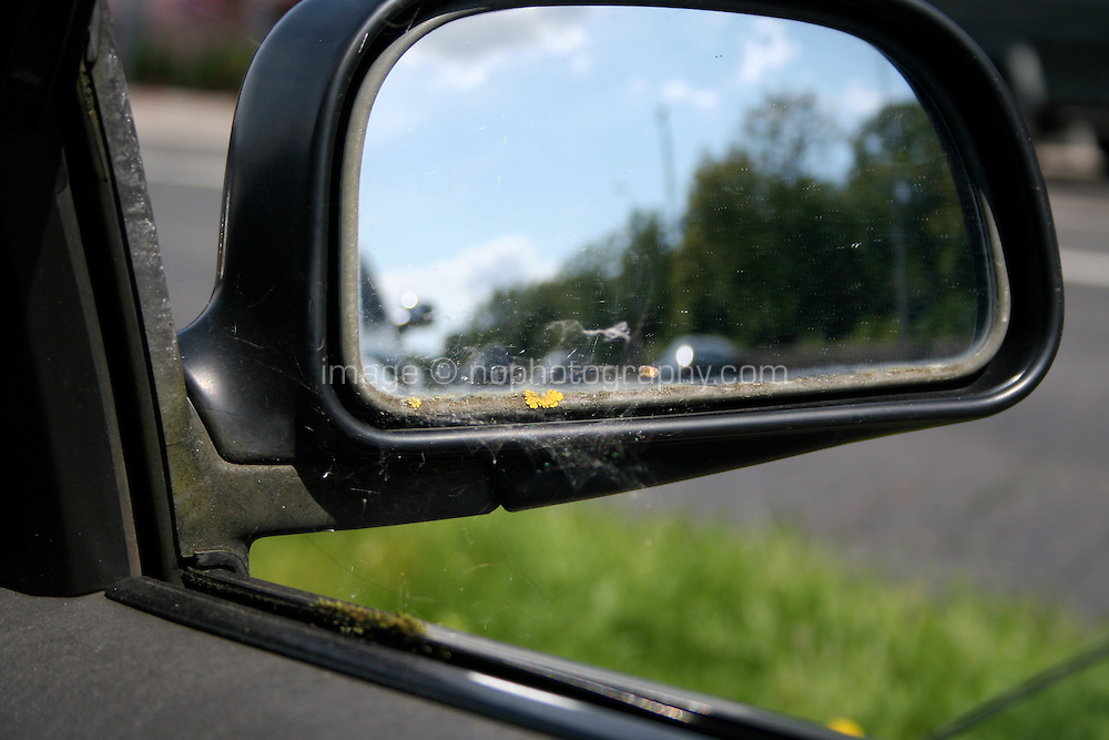 View of cobweb covered car wing mirror from inside car in daylight