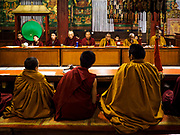 17 MARCH 2017 - KATHMANDU, NEPAL: Tibetan Buddhist monks at morning prayers before sunrise in a monastery next to Boudhanath Stupa in Kathmandu. Boudhanath Stupa is the holiest site in Nepali Buddhism. It is also the center of the Tibetan exile community in Kathmandu. The Stupa was badly damaged in the 2015 earthquake but was one of the first buildings renovated.       PHOTO BY JACK KURTZ