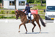 Esther Hoekstra - James Dean D&E<br /> Topsport Dressage Exloo 2018<br /> © DigiShots