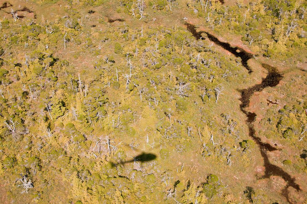 Ridley Island aerial