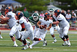 01 October 2016:  Andrew Bowers fakes a hand off to Sola Olateju during an NCAA division 3 football game between the Wheaton Thunder and the Illinois Wesleyan Titans in Tucci Stadium on Wilder Field, Bloomington IL (Photo by Alan Look)