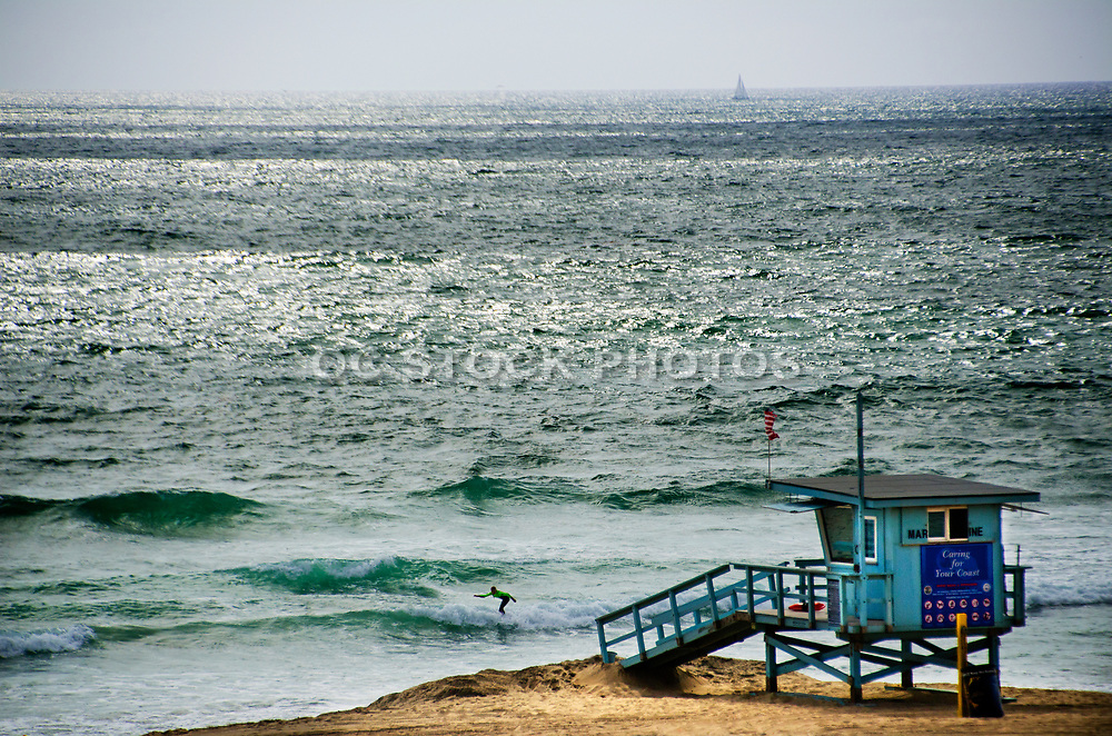 Surfing Waves in Manhattan Beach California