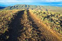 Rocky dirt road curving over hill in high desert Umptanum Ridge Eastern Washington USA